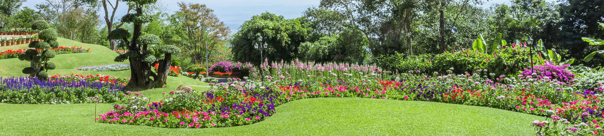 manicured garden with blooming seasonal flowers and shaped trees
