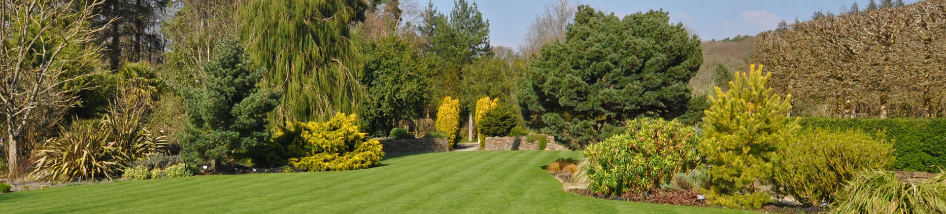 manicured garden with perfect lawn and trees